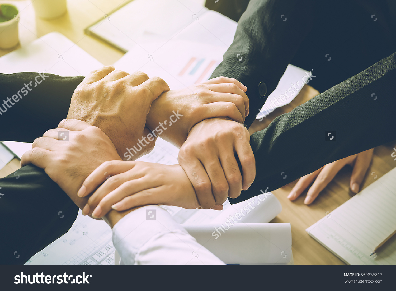stock photo the business confederate hands together the teamwork and unity is the only one completion 559836817